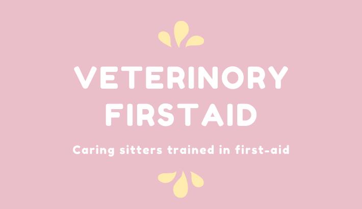 Veterinory Firstaid